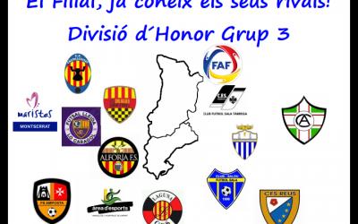 FILIAL | Composició Grup 3 Divisió Honor 2017/2018
