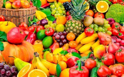 ESCOLA | Nou projecte d'Alimentació Saludable